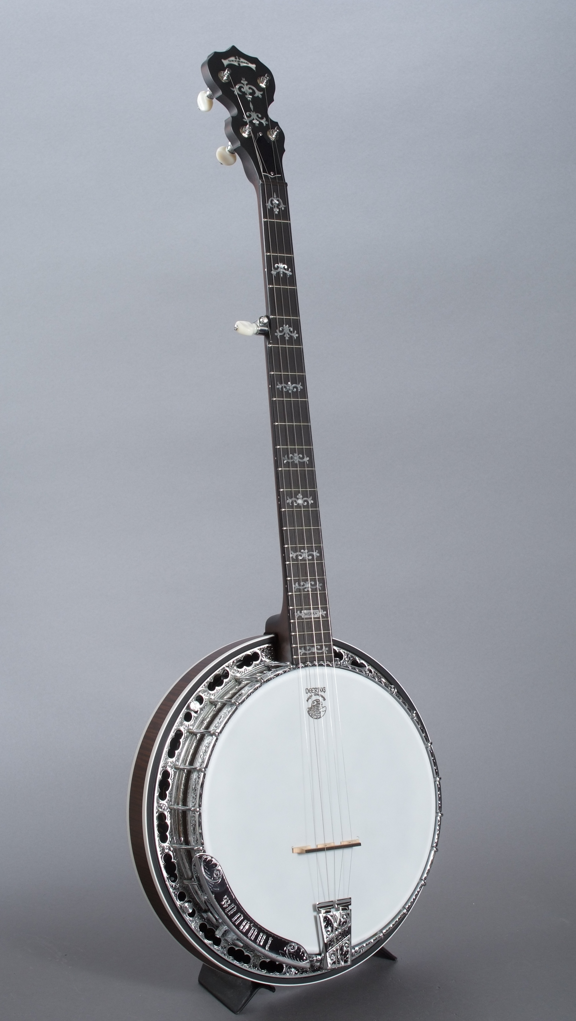 100,000th banjo full shot - crop.jpg