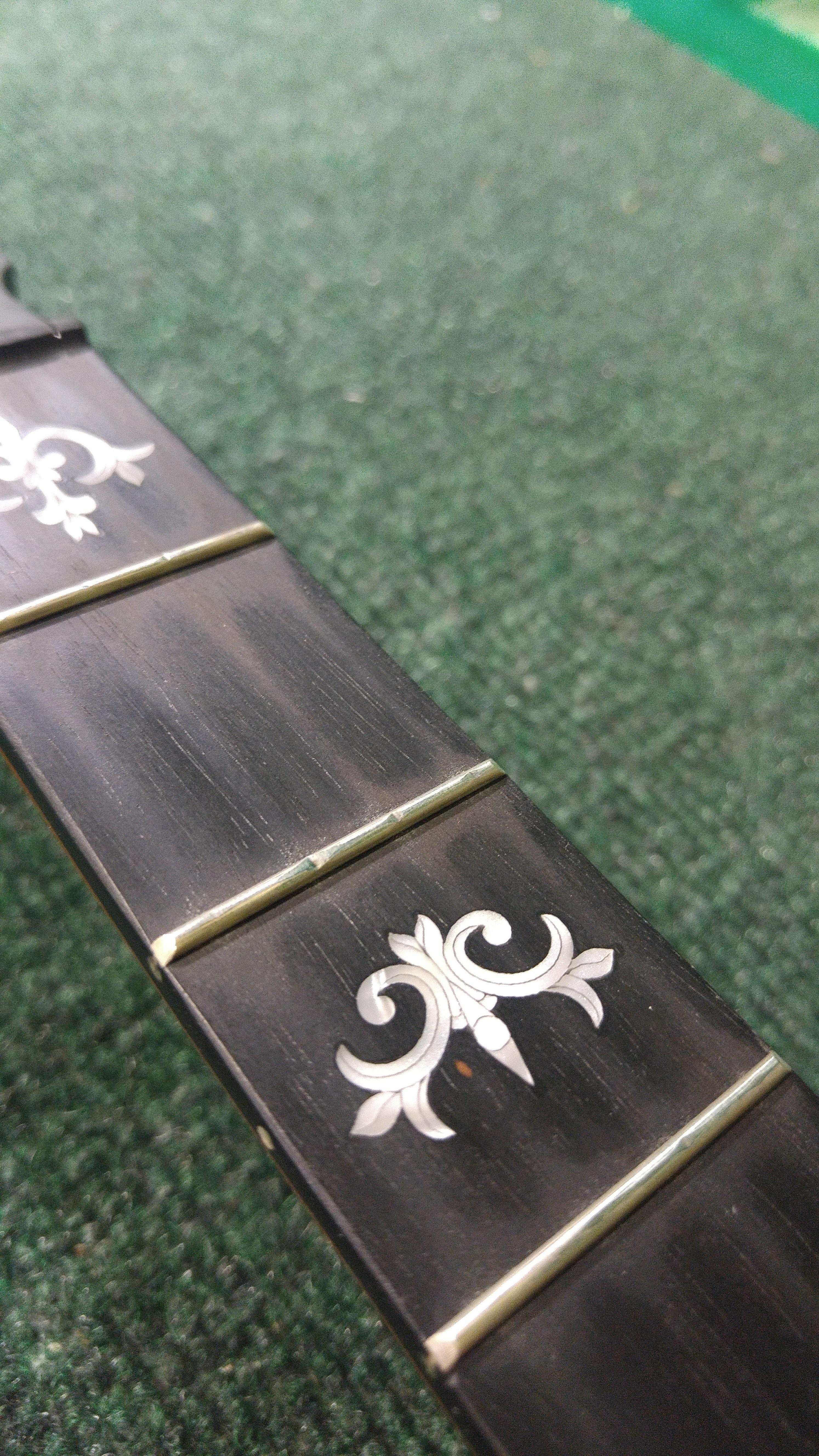 Banjo Fret Wear