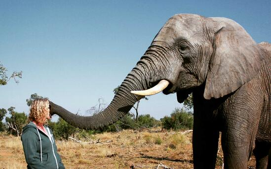 "Jamie Deering ""kissed"" by African Elephant Chishuru"