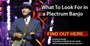 What to look for in a plectrum banjo