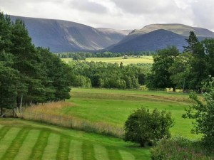 aviemore-news-announce