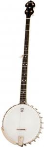 Vega Long Neck Banjo