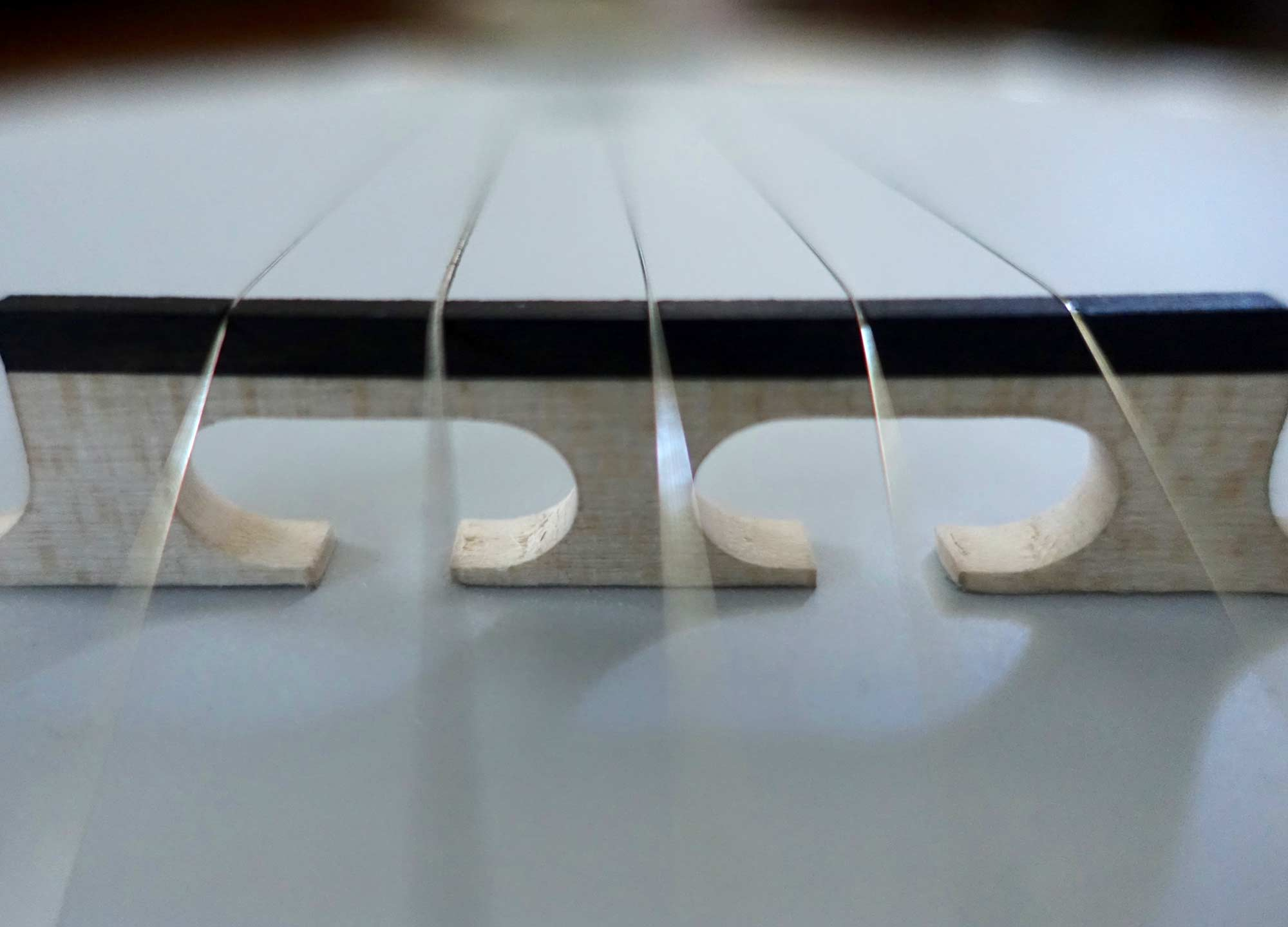 How To Choose the Right Banjo Strings